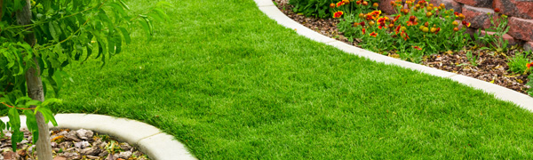 Contact Kiwi Landscaping - Lawn Care & Lawn Maintenance Walled Lake MI - lawn-care-and-fertilization-services